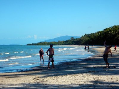 Beach_cricket1.jpg