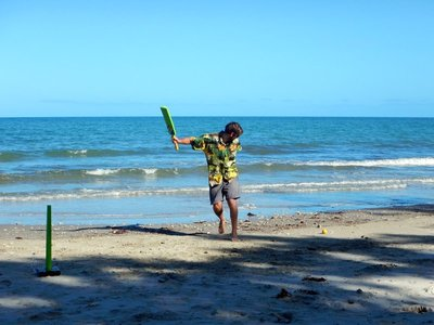 Beach_cricket2.jpg