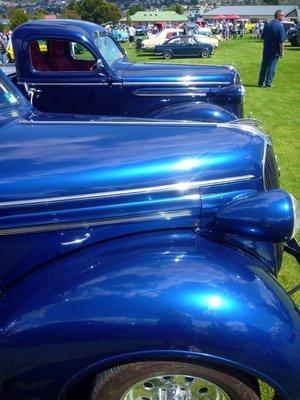 Blue_Bonnets.jpg