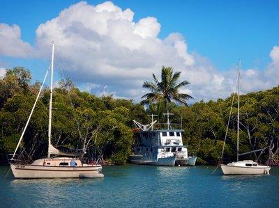 Boats_in_the_Daintree.jpg