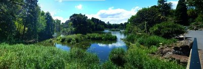 Botanical_Gardens_Lake.jpg