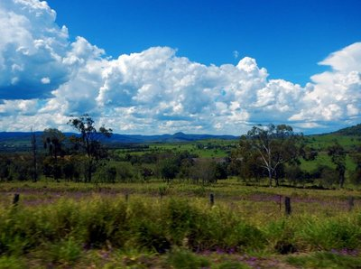Bunya_Mountains1.jpg