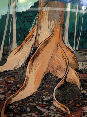Buttress_Roots_sketch.jpg