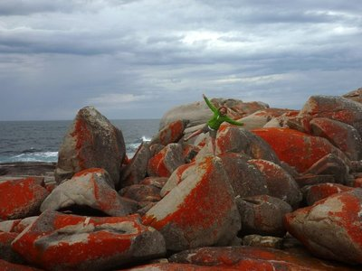Charly_red_rocks.jpg