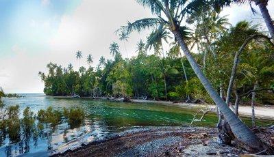 Cocnut_Beach.jpg