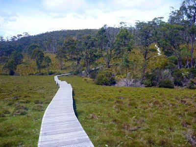 Cradle_Valley_Boardwalk.jpg