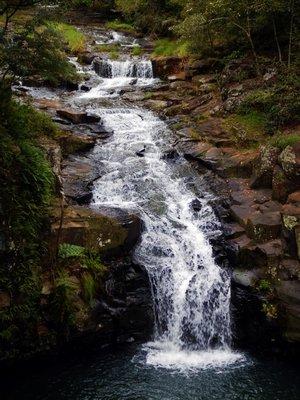 Dalwood Falls close up