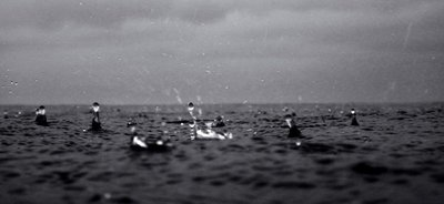 Droplets Horizon