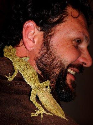 Leaf-tailed gecko Mark3
