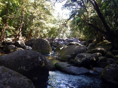 Mossman_river1.jpg