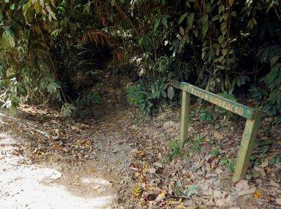 Mount_Sorrow_ridge_trail.jpg