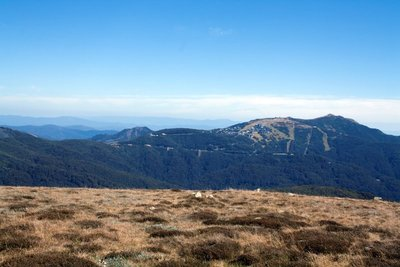 Mt Stirling to Mt Buller