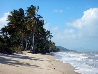 Newell_Beach_north.jpg
