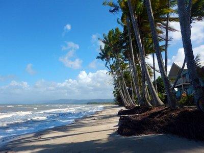 Newell_Beach_south.jpg