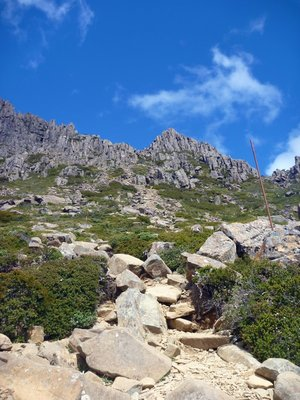 Path_up_Cradle_Mountain.jpg