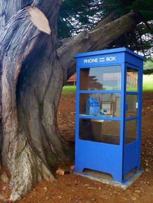 Phone_Box.jpg