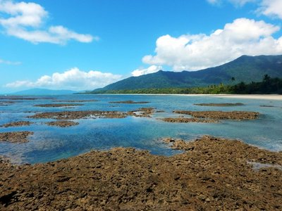 Reef_to_Rainforest.jpg