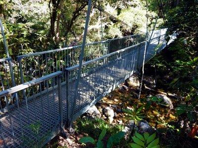 Rex_Creek_Bridge1.jpg