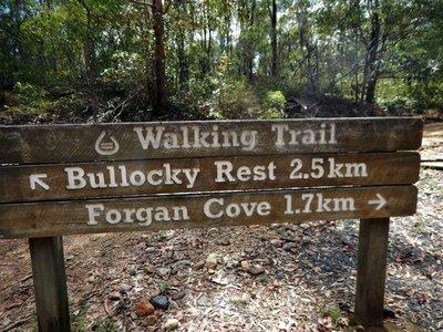 Walkign_Trail.jpg