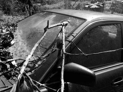 cracked_windscreen.jpg