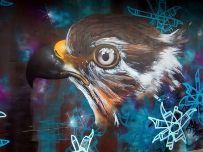 eagle_grafitti_Toowoomba.jpg