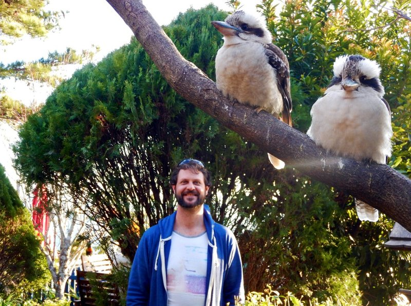 Kookaburras & Mark