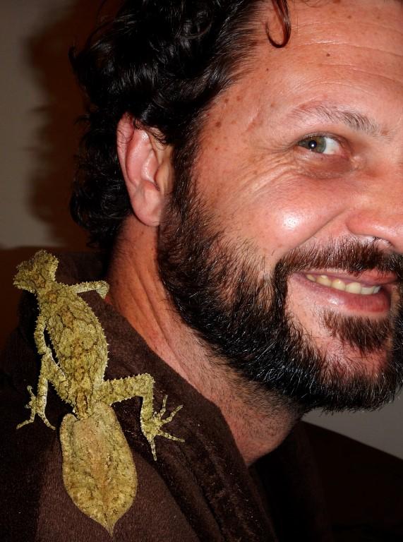 Leaf-tailed gecko Mark2