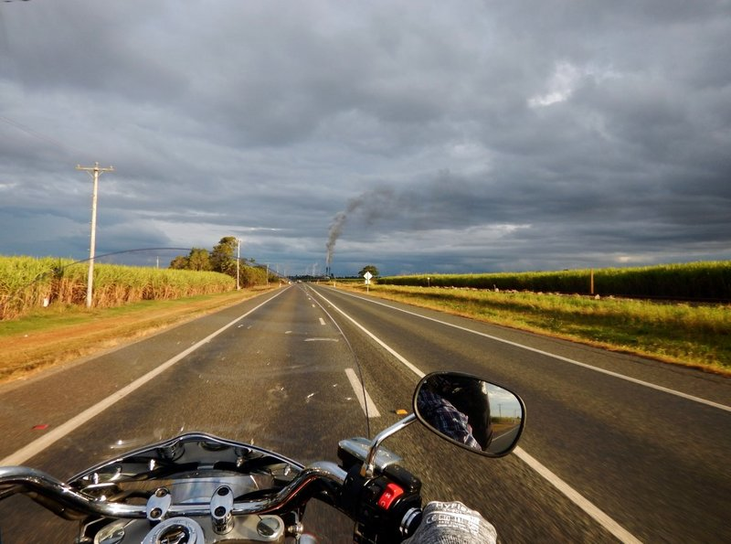 riding sugar cane road