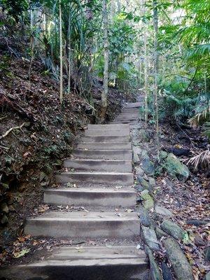 red_walking_track_steps.jpg