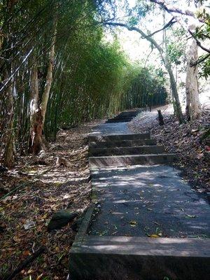 red_walking_track_steps2.jpg