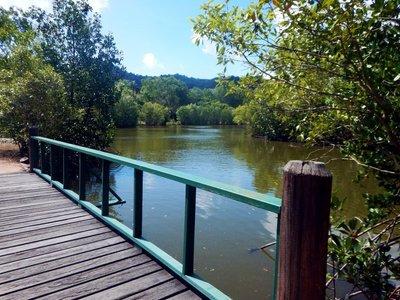 saltwater_creek.jpg
