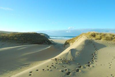Lewis Beach