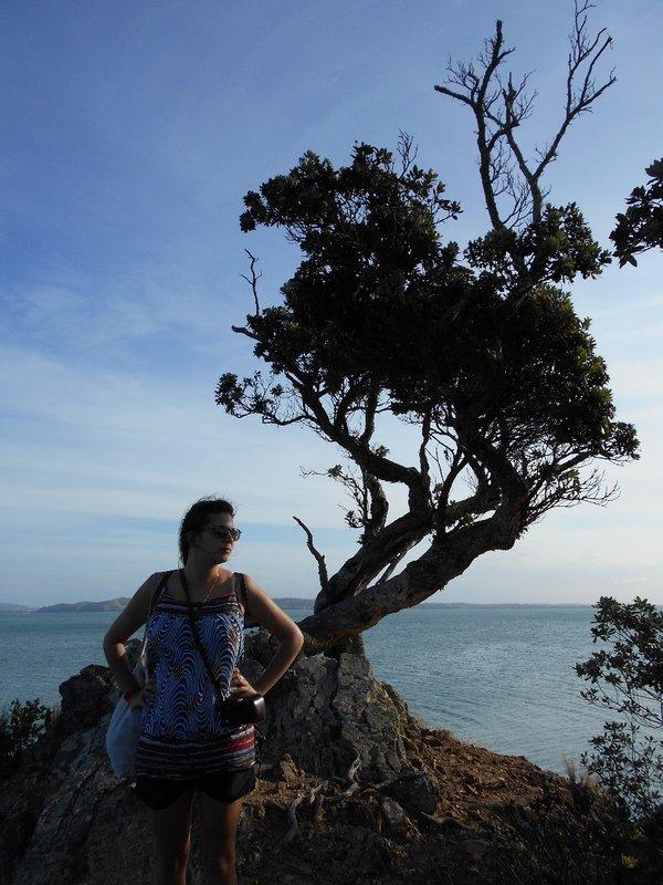 Adeline Tree