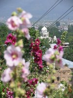 Kashmir beautiful settings