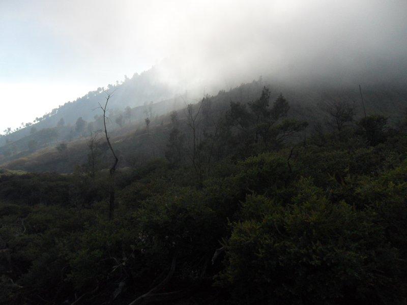Mist at Ijen