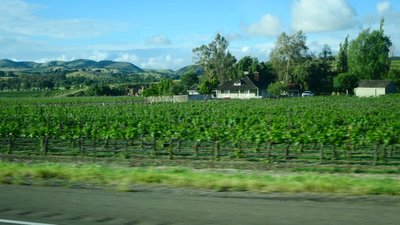 California wine country, north of L.A.