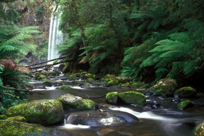 Hopetoun Falls and Mossy Rocks