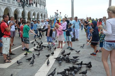 People feeding pigeons at St.Marks square