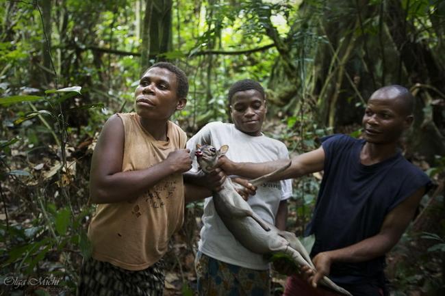 large_10_Congo_olga_michi.jpg