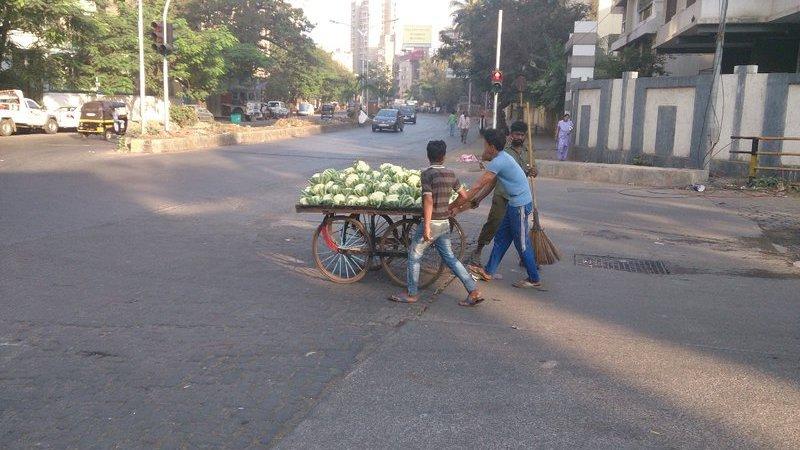 Marchands de chou-fleurs