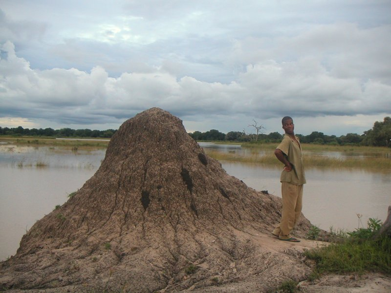 Peter & the termite mound