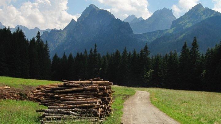 Bielovodska Dolina, Slovakian High Tatras