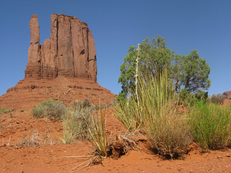 West Mitten Butte, Monument Valley Tribal Park, AZ