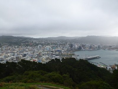 Wellington Lookout