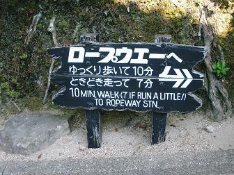 Miyajima - Japanese Tourism at its finest...
