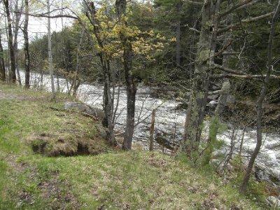Stream in back gardens of cabin in Adirondacks