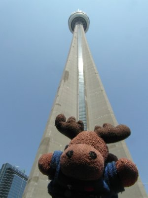 At CN Tower
