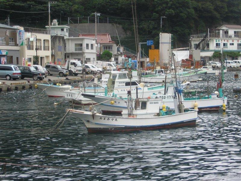 Nera, Izu peninsula, harbour