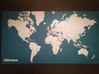 Pin World
