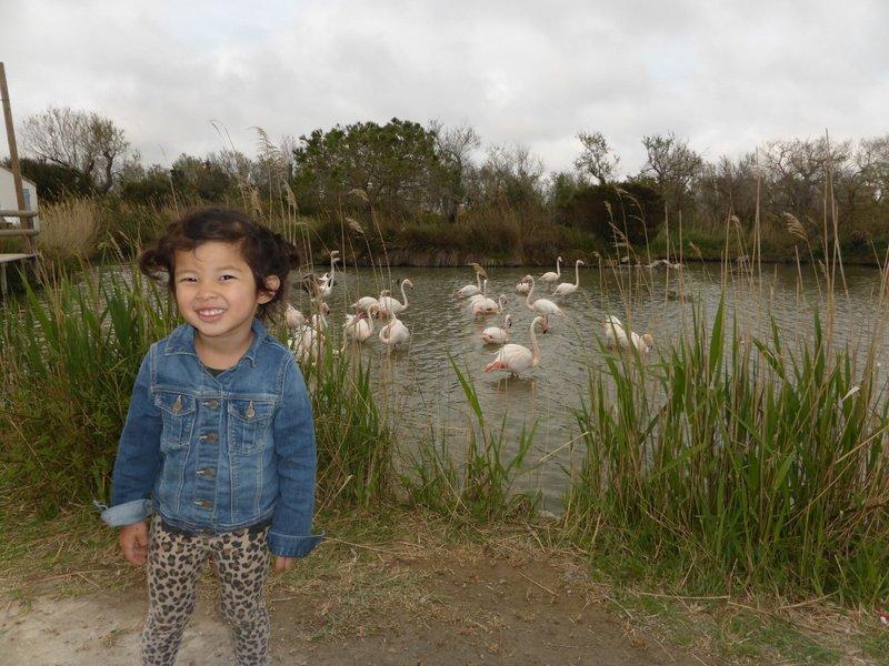 large_Bird_sanctuary_6.jpg